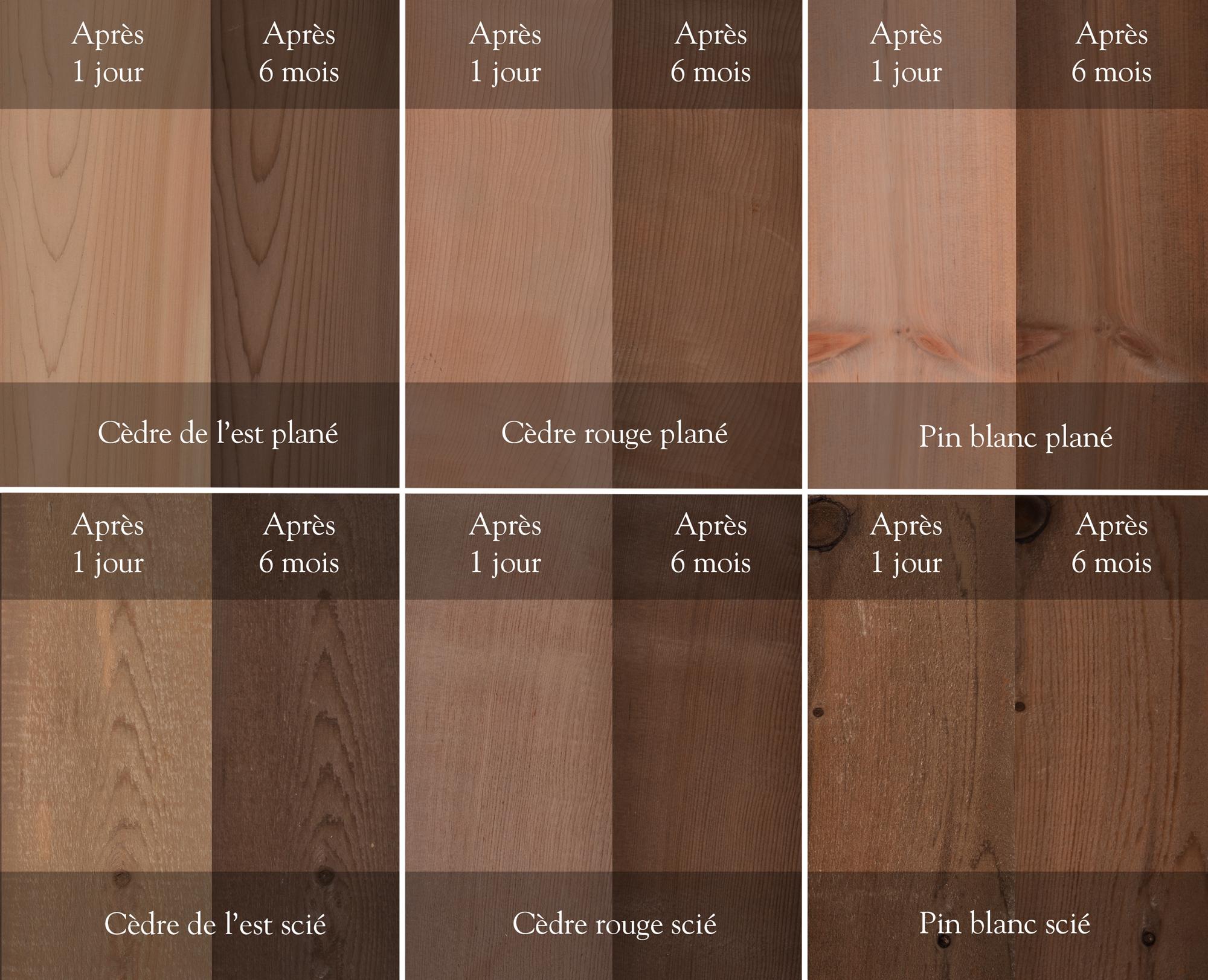 LifeTime  Traitement pour bois  LifeTime traitement pour bois