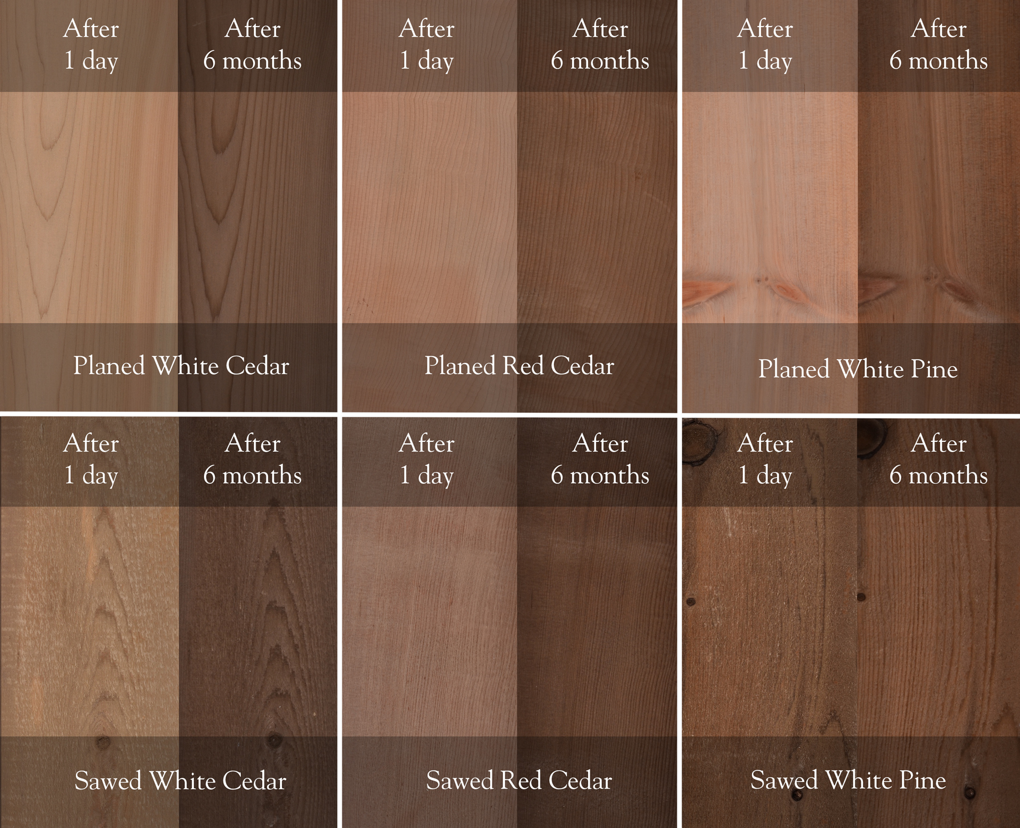 Red Cedar Color ~ Lifetime wood treatment