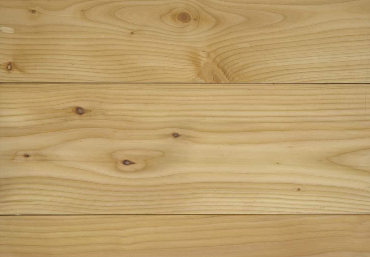 Reconnaitre l 39 essence de bois for Bois de meleze prix